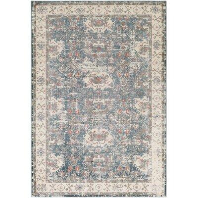 Ottawa Gray/Blue Area Rug Rug Size: Rectangle 53 x 73