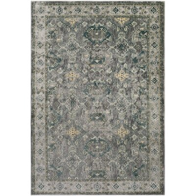 Ottawa Gray/Blue Area Rug Rug Size: Rectangle 810 x 129