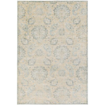 Ottawa Cream/Gray Area Rug Rug Size: 53 x 73