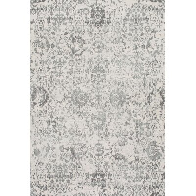 Duclair Faded Gray Area Rug Rug Size: 4 x 6