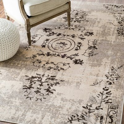 Barthe Area Rug Rug Size: Rectangle 4 x 6