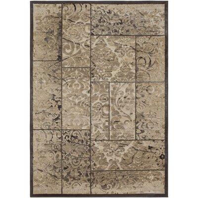 Blue Hill Vintage Khaki Area Rug Rug Size: Rectangle 7 10 x 10 6