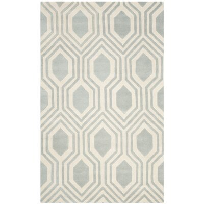 Aula Hand-Tufted Grey/Ivory Area Rug Rug Size: Rectangle 3 x 5