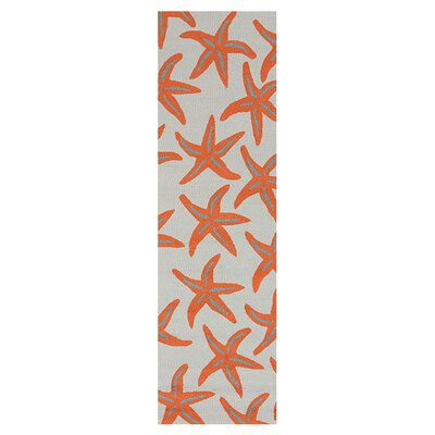 Solana Hand-Woven Orange Indoor/Outdoor Area Rug Rug Size: Runner 26 x 8