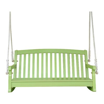 Bristol Hanging Porch Swing Finish: Mint Green