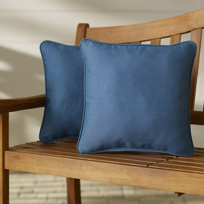 Paulino Outdoor Throw Pillow Color: Sky Blue