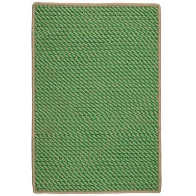 Mammari Hand-Woven Green Indoor/Outdoor Area Rug Rug Size: 3 x 5