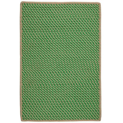 Mammari Hand-Woven Green Indoor/Outdoor Area Rug Rug Size: 4 x 6