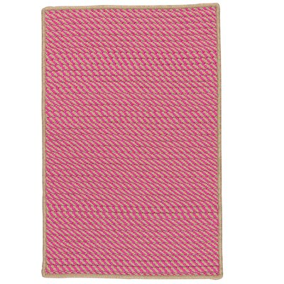 Mammari Hand-Woven Pink Indoor/Outdoor Area Rug Rug Size: Runner 2 x 6