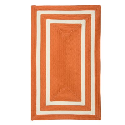 Marti Hand-Woven Outdoor Orange Area Rug Rug Size: Rectangle 7 x 9