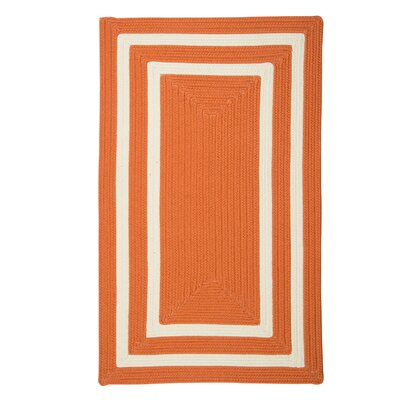 Marti Hand-Woven Outdoor Orange Area Rug Rug Size: 7 x 9