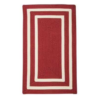 Marti Hand-Woven Outdoor Red Area Rug Rug Size: Rectangle 4 x 6