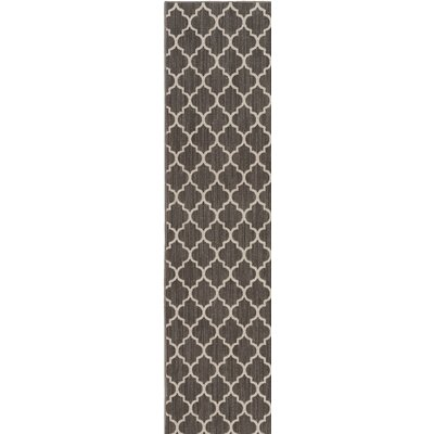 Central Volusia Gray Indoor/Outdoor Area Rug Rug Size: Runner 2 x 8