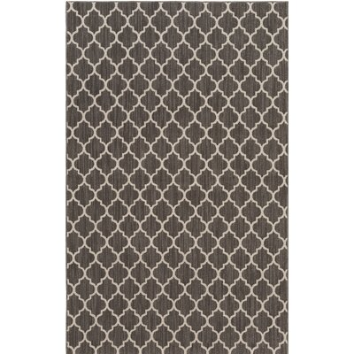 Central Volusia Gray Indoor/Outdoor Area Rug Rug Size: 8 x 11