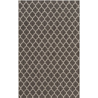 Central Volusia Gray Indoor/Outdoor Area Rug Rug Size: Rectangle 5 x 8