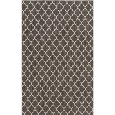Central Volusia Gray Indoor/Outdoor Area Rug Rug Size: Rectangle 6 x 9