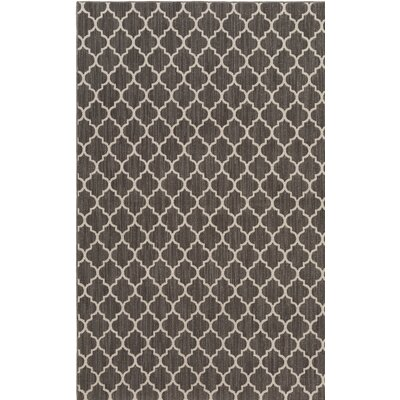 Central Volusia Gray Indoor/Outdoor Area Rug Rug Size: Rectangle 4 x 6