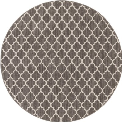 Central Volusia Gray Indoor/Outdoor Area Rug Rug Size: Round 6