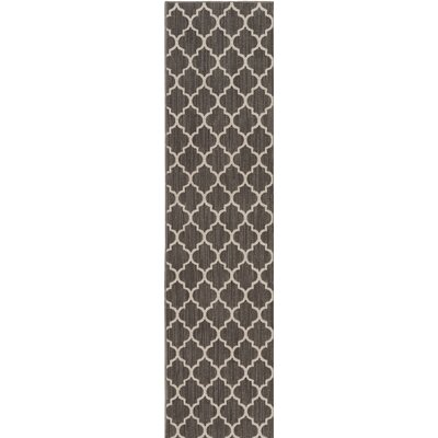 Central Volusia Gray Indoor/Outdoor Area Rug Rug Size: Runner 2 x 10