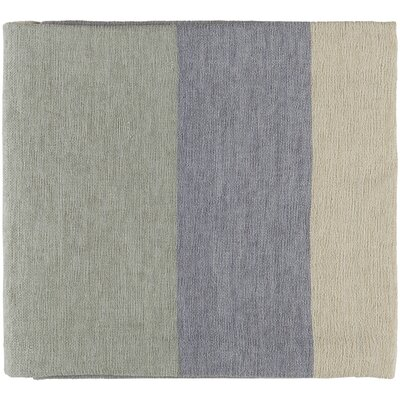 Williamsburg Throw Color: Pale Blue/Silver Gray/Cream/Light Gray