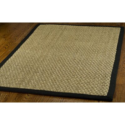 Richmond Natural & Black Area Rug Rug Size: 4 x 6
