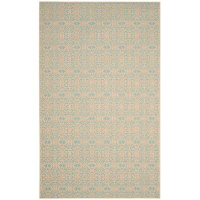 Allegra Hand-Woven Area Rug Rug Size: Rectangle 4' x 6'