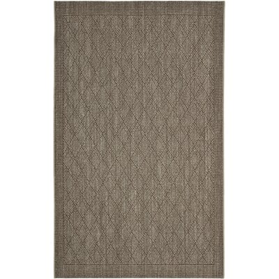 Allegra Hand-Woven Silver Area Rug Rug Size: Rectangle 4 x 6
