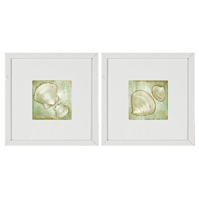 'Shells' 2 Piece Framed Graphic Art Set