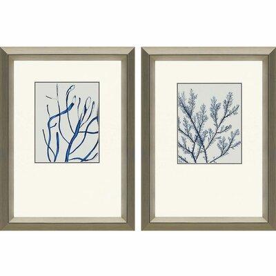 Beachcrest Home Indigo Coral II Framed Graphic Art Set