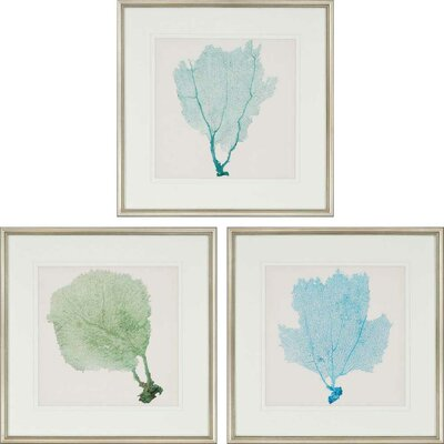 'Sea Fan I Giclee' 3 Piece Framed Graphic Art Set