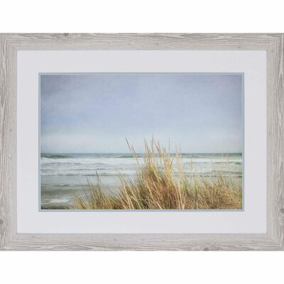 'Sea Grasses II' Framed Photographic Print
