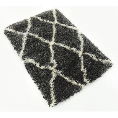 Southampton Black Area Rug Rug Size: Rectangle 22 x 3
