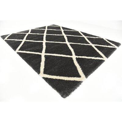 Southampton Black Area Rug Rug Size: Rectangle 10 x 13