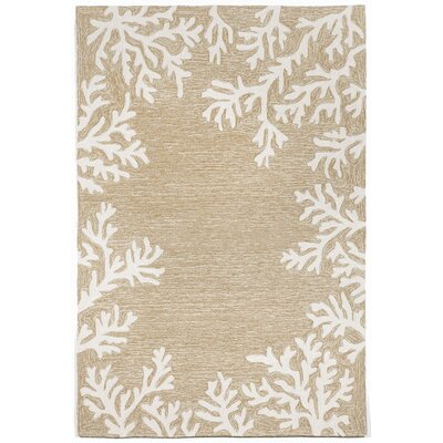 Claycomb Coral Border Neutral Indoor/Outdoor Area Rug Rug Size: Round 5