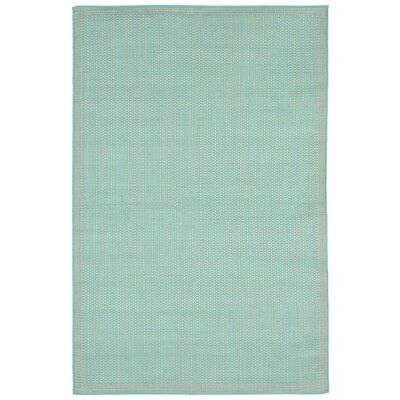Clatterbuck Aquamarine Indoor/Outdoor Area Rug Rug Size: 410 x 76