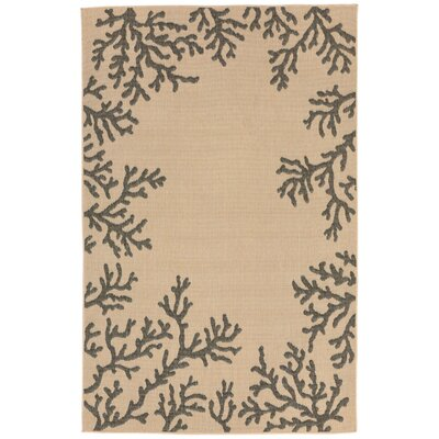 Clatterbuck khaki Indoor/Outdoor Area Rug Rug Size: Runner 111 x 76