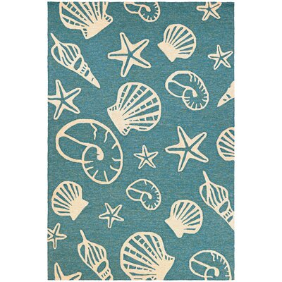 Monticello Cardita Shells Hand-Woven Turquoise Indoor/Outdoor Area Rug Rug Size: Rectangle 36 x 56