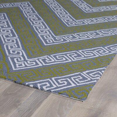 Avianna Grey Indoor/Outdoor Rug Rug Size: Runner 2 x 6