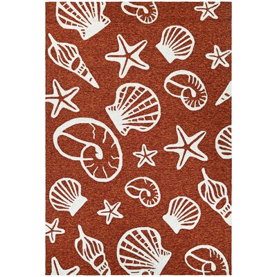 Monticello Cardita Shells Hand-Hooked Terracotta Indoor/Outdoor Area Rug Rug Size: Rectangle 56 x 8