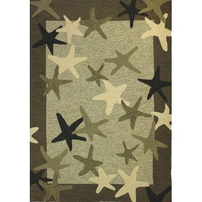 Coeymans Starfish Field Indoor/Outdoor Rug Rug Size: 5 x 7