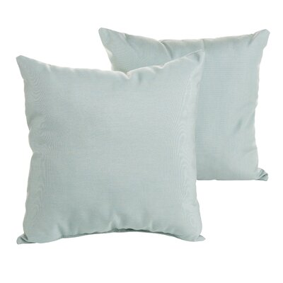 Livia Indoor/Outdoor Sunbrella Throw Pillow Size: 22 H x 22 W x 6 D