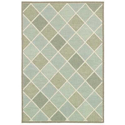 Seidenberg Green Indoor/Outdoor Area Rug Rug Size: 39 x 55