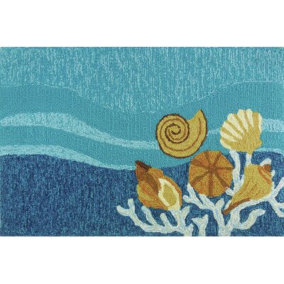Coeymans Shell Turquoise Indoor/Outdoor Area Rug Rug Size: 2'2