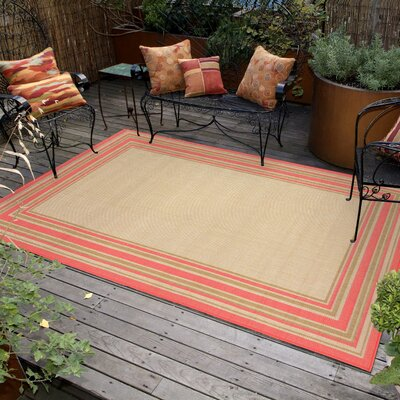 Roselawn Indoor/Outdoor Area Rug Rug Size: 111 x 211