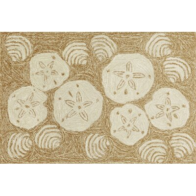 Shediac Natural Shell Toss Indoor/Outdoor Area Rug Rug Size: 2 x 3