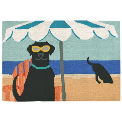 Shediac Hand-Tufted Blue Indoor/Outdoor Area Rug Rug Size: 2 x 3