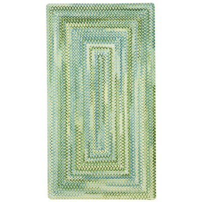 Celise Green/White Area Rug Rug Size: Concentric 18 x 26