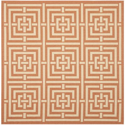 Inverness Highlands Abstract Terracotta Rug Rug Size: Square 67