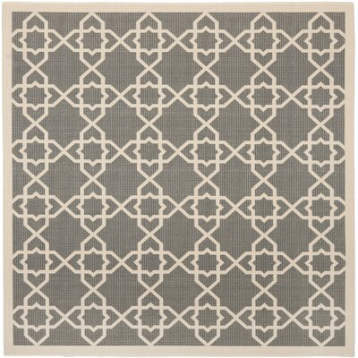 Ceri Grey/Beige Indoor/Outdoor Area Rug Rug Size: Square 67