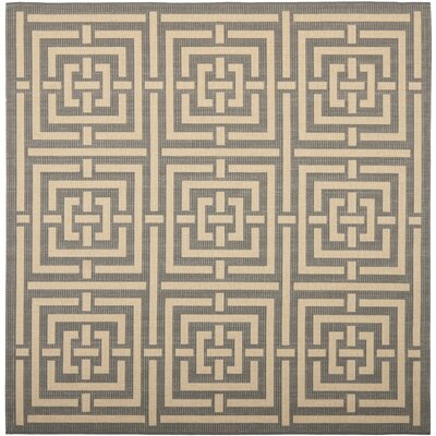 Inverness Highlands Grey/Cream Indoor/Outdoor Rug Rug Size: Square 67